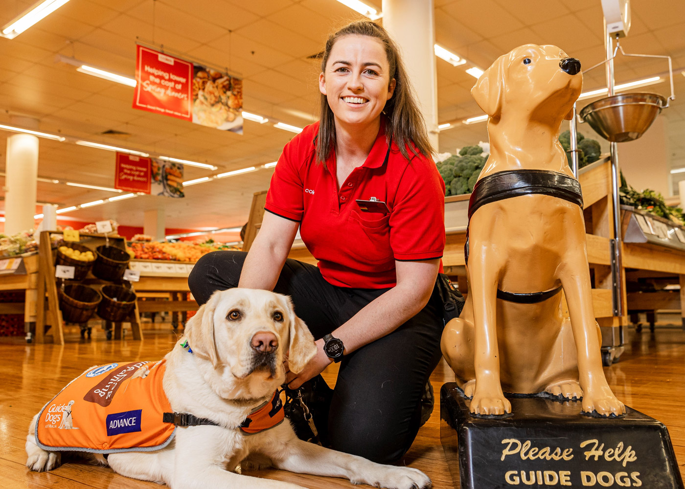 Trainee Support Dog Michael with Coles Store Manager Jessica Craven and collection dog